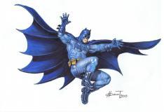 Batman tribute