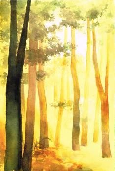 Forêt de Gabriel
